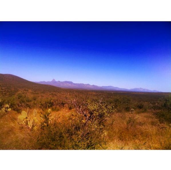landscape meg